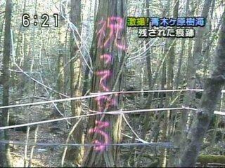 樹海 怖い ケ 原 青木