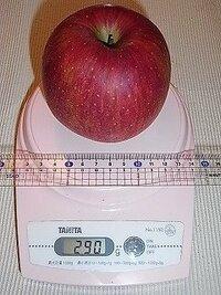リンゴ 1 個 分 の カロリー を 教え て