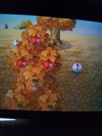 とびだせ どうぶつ の 森 おいしい フルーツ