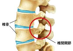 脇腹 の 下 肋骨 痛い 右