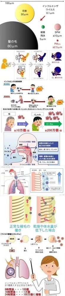 インフルエンザの初期症状の時にイソジンでうがいしても治りませんか?    うがいでは無理