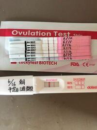 排卵 検査 薬 妊娠 した とき