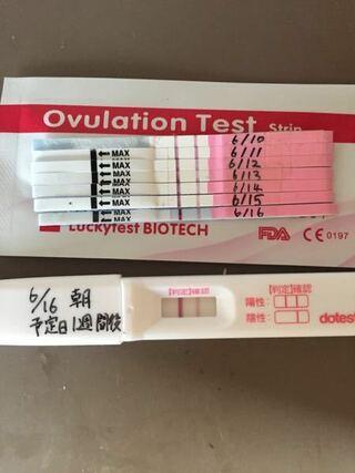 排卵検査薬 妊娠した時