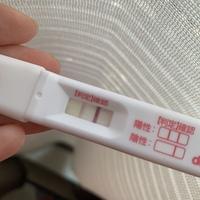 妊娠検査薬 生理予定日当日 陰性