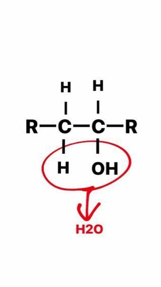OHと、OHが付いている炭素の隣の炭素に付いているHを取ります。