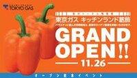 Grand Openは和製語ですか?英語圏で使われていますか?