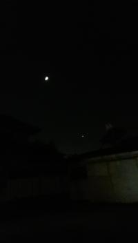 この月の右下にある星は金星ですか??