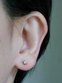 福耳に似合うピアス穴の位置を教えてください! 一粒ダイヤやパールに憧れて先週穴を開けたのですが、耳たぶが大きいせいか中央寄りで間抜けな感じがします。 開け直す場合、どの位置がベストかアドバイス願います。 現在の穴は下から約7ミリ、顔側(内側)から約10ミリ。(片方はもう少し下、角度も下向き) 4ミリのファーストピアスがついています。 自分ではあと2ミリ(石半個分)下↓へ、2ミリ顔側→...