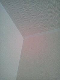 1DKのアパート天井の隅にある白の板は何でしょうか? クロスを貼る際にはこの白い板はのけるのでしょうか?
