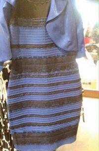 人によって見える色が違うのはなぜ?  このドレス人によって青黒、白金に見えるらしいのですが昨日初めてこの画像を見たときは白金にしか見えなく6歳の娘は青と黒だよと言ってました  でも どうみても白金だよねと個人的に思いながら いま知恵袋にUPするために画像を見たら 昨日は白金だったのに青と黒にしか見えない 昨日みてた色はなんだったんだと。。 どう頑張っても青と黒にしか見えなくな...