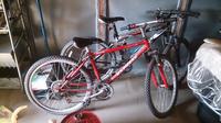 画像の赤い自転車の名前が分からないので教えてください