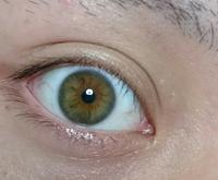 自分は ヘーゼルの瞳です。  質問なんですが ヘーゼルの瞳を調べてた際 ヨーロッパ アメリカに多い事が分かりました 日本でも九州などで多く見られると書いてありました。 なぜ九州にヘ ーゼルの瞳が多い...