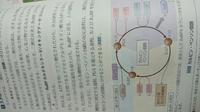 カルビンベンソン回路について。 勉強していて分からないところがありました。 カルビンベンソン回路はまずC5化合物であるリブロースビスリン酸と反応する。その結果C3化合物であるホスホグリセリン酸が2分子できる。、とありますが画像では×12とありよくわかりません。 どういうことでしょうか。