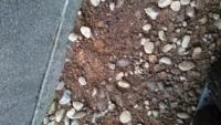 花壇の作り方についてなのですが、砂利がひいてあるところに小さな花壇を作りたのですが、もともとある土はどうしたらいいのでしょうか?