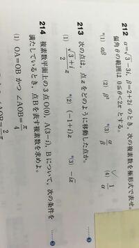 213(3)の問題ですが、答えは実軸に対称で-パイ/2回転したものとありますが、3パイ/2回転ではダメなのでしょうか?