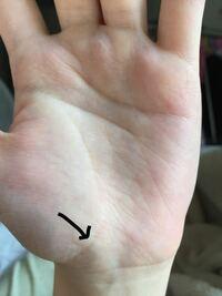 手相 左側の手首から伸びている線はなんと言う線ですか?