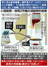 『格納容器530シーベルト!廃炉は不可能!石棺化決定か? 福島原発』 2017/2/4  → 人が近づくと30秒で死ぬ。 原子炉圧力容器はもちろん、格納容器にも近づくことができない。 つまり、廃炉の作業はできない...