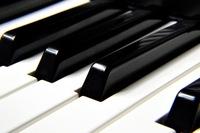 【ピアノ単音素材が欲しい】  ブラウザで動くピアノアプリを作ろうと思い,各音階の音素材を探しています. StudioOneに入っているデフォルト音源を抜こうかとも思ったのですが,さすがに一般公開するものにそれを使うのは良くないかと思ったので,他に何か良い音源が無いだろうかと質問した次第です.  できれば88鍵分,全ての音素材が欲しいです.