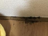寝室の窓下に砂みたいな黒いものがいっぱいありました。 なにかの糞でしょうか?