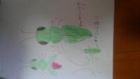 ベランダで見つけた虫の名前がわかりません。 先日、子供が大阪 京橋付近の自宅マンションのベランダで見つけた虫の名前がわかりません。 直ぐに羽を広げて飛んで?逃げたため写真がありません。 図鑑でキリギリスやバッタ、カマキリなど見せましたが全て違うと言われました。 お分かりになられる方是非回答よろしくお願いします。