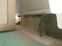 掃除 ベランダ 排水 溝