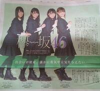 この写真の欅坂46が履いている靴ってドクターマーチンですか?