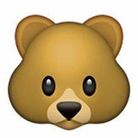 下記の画像の絵文字の意味を教えて下さい。クマ以外に何か意味があるのでしょうか?
