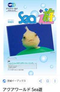 水族館・海洋生物が大好な中2です。 学校で飾られている水族館などの広告があるのですが、そういうものって水族館以外のどこで貰えるのでしょうか? 大洗水族館で言ったら「sea遊」などです(下の画像参考)。 ご回答お待ちしております。