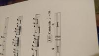 二分の二拍子は四分の四拍子となにが違うのでしょうか。 回答よろしくお願いします。