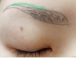 眉毛,コンシーラー,自眉,コンプレックス,並行アーチ眉,アナスタシア,眉尻