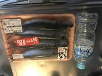 いわしの丸干しの食べ方について スーパーでいわしの丸干しを買いました 特大!と買いてあったのでたぶん大きいのかと…?  これは焼く前に内臓を取るものなのですか??  食べ方は普通のお魚と一緒で骨から身を剥...