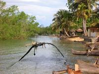 ゼット様、リクエスト失礼します。   パプアニューギニアに出るローペンというUMAをご存知ですか?  翼竜に似た生物です。