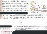 中二の理科で、画像の問題についてなのですが、なぜXはE(せきずい)を通らないのですか? 一つ前のページにはせきずいを通るという図が載っているのですが...