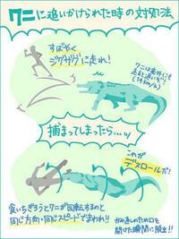 「ワニとの追いかけっこで勝つ方法&負けた場合の対処法」 https://nanapi.jp/ja/3731  という記事を見て気になりましたが、ワニと追いかけっこした人はいますか?