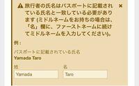 エクスペディアの航空券なのですがパスポートの名前でパスポートは全部大文字でYAMADA TAROと記載されてますが、エクスペディアの見本ではYamada Taroになってました。どちらが正しいでしょうか?