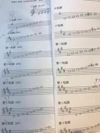 音楽 楽典について質問です。 写真のように、嬰ハ短調を和声的短音階にするというものなんですが、なぜ嬰ハ短調だけ第七音に♯をつけるだけでなく、他の音の場所が変わっているのでしょうか。   音楽全くわからな...