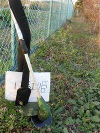 庭に雑草生えてるのと太陽光パネルがあるのではどっちがCO2削減ですか?