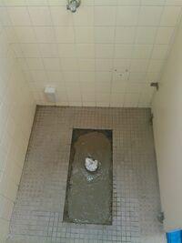 和式トイレから洋式にする時  既存のタイルを生かすため 元々和式トイレがあった部分に 五センチ程のモルタルでいいのでしょうか   それともモルタルに バラス などの 石を混ぜてコンクリ ートの状態にして ...