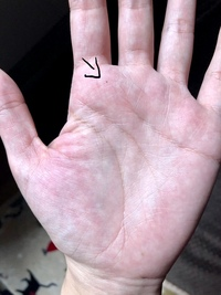 ほくろ 人差し指 手首のほくろ占いの意味10選!側面などできた位置によって意味が変わる?