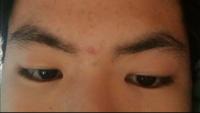 眉毛1回も整えた事ないです。この眉ならどんな風に整えた方がいいですかね?