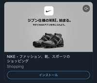 ナイキのアプリの広告に出てきたこの靴の詳細を知りたいです!名前だけでもご存知の方教えてください。