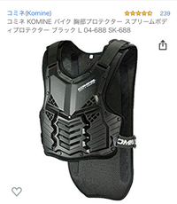 KOMINEのこの胸部プロテクターは上着の上に着るタイプですか?それとも薄着の上に着てプロテクターの上に上着を着るタイプですか??
