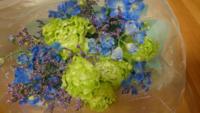 三種類のお花の種類を教えてくださいm(><)m
