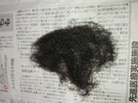 今は電動カミソリを使ってすね毛や腕毛を剃っているのですが、色々あり約1ヶ月放置したらこんなになってしまいました。 定期的に剃ればいいのですが、意外と面倒なので生えてこなくしたいです。  でもレーザー脱...