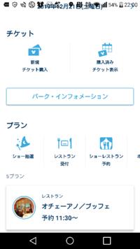 ディズニーのバケパを公式ページでオンライン予約したんですがディズニーの公式アプリで確認したところ購入済みチケット表示では確認できないのですが旅行日の直前近くにならないと表示されないのでしょうか?
