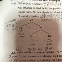 言語学の樹形図についてです。 このDPとはなんでしょうか?