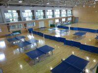 卓球台の滑り具合について  閲覧ありがとうございます。大学で体育会の卓球部に入っている大学生です。 私たちの大学ではミズノのセパレート式の台(品番:18LT22326)と三英の一体式の台(品番:13-603)を練習で...