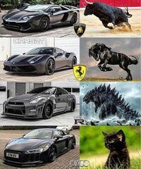 車のエンブレムについて。 この画像を見ると ランボ→暴れ牛 フェラーリ→暴れ馬 35GTR→ゴジラ…。まぁ日本のイメージかな アウディ→猫…?!!  といった感じです。 35については海外の方の日本といったらゴジラ的な...