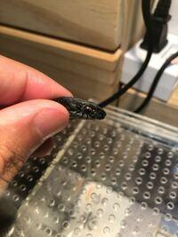 田んぼでヘビを見つけました。このヘビの種類はなんですか? ヤマカガシの黒化型かな?と思っているのですが、宜しくお願いします。