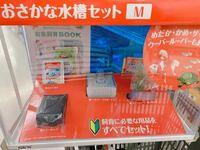 この水槽についてるロカボーイSサイズだけで金魚の飼育は出来ますか? 今まで水槽内のコーナーに付けるタイプのフィルター(Suisaku)を使っていたのですが、ロカボーイだけでも大丈夫なのでしょうか?